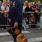 Hundefører og hund med medalje