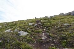 heien-road-trip-2015-straume-thea-topptur-veggfjellet-img_4540
