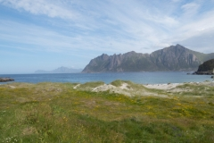 hovden-road-trip-2015-img_4568