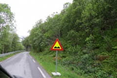 l%c3%a6rdal-aurland-molde-aurland-road-trip-2015-img_4891
